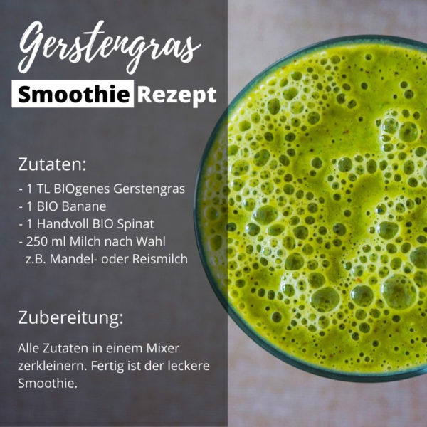 BIOgener Gerstengras Smoothie Shop